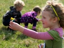 Flower Picking, English Countryside